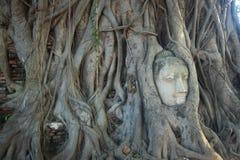 ฺBuddha en Wat Mahatat Tailandia Foto de archivo libre de regalías