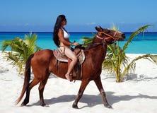 À cheval dans Cozumel image stock