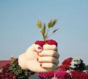 À disposition il y a des palmettes Jardin de miracle de Dubaï Photographie stock libre de droits