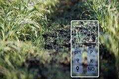 À l'aide d'un smartphone déterminer l'état de l'acidité de sol, humidité, phosphore, potassium, azote de nitrate images stock
