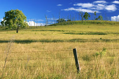 À l'intérieur agricole et champ de ferme Photographie stock