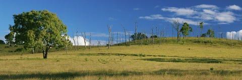 À l'intérieur agricole et champ de ferme Photographie stock libre de droits