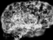 À l'intérieur du cerveau pour le blanc Photo libre de droits