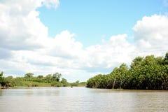 À l'intérieur du delta de rivière images stock