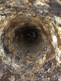 À l'intérieur du vieux tuyau photo libre de droits