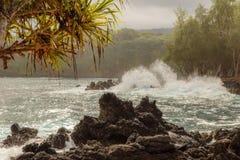 À la fin de Keanae Rd Maui photographie stock libre de droits