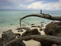 À la mer Photo libre de droits