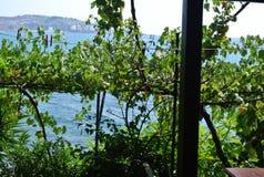 À la mer est moins de 10 mètres Repos Monténégro, barre d'été Photo libre de droits