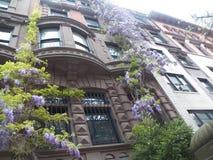 À pleine vue du Westside supérieur NYC autoguidez couvert dans la violette Images libres de droits