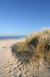 À praia Imagem de Stock Royalty Free