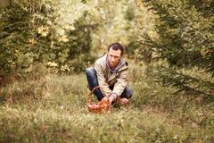 À sélectionner des champignons Photos stock