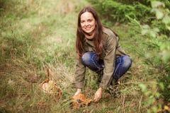 À sélectionner des champignons photographie stock libre de droits