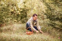 À sélectionner des champignons Photo libre de droits