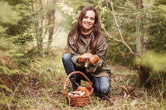 À sélectionner des champignons Photo stock