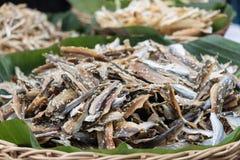 À¸£in secado al sol Tailandia de los pescados Fotos de archivo libres de regalías