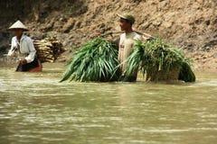 À travers le fleuve Photographie stock libre de droits