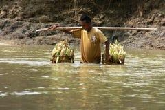 À travers le fleuve Photo libre de droits