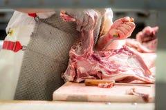 À une usine de viande Photographie stock libre de droits