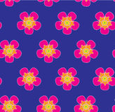 Às bolinhas cor-de-rosa selvagem das flores na obscuridade - teste padrão sem emenda do vetor do fundo azul Foto de Stock Royalty Free