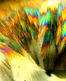 Ácido ascórbico cristalizado foto de archivo libre de regalías