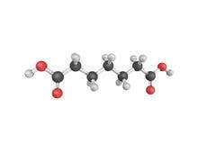 Ácido Pimelic, derivados de que são envolvidos no biosynthe Imagem de Stock Royalty Free