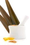 Ácidos grasos esenciales imagen de archivo