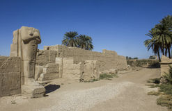 Egipto, Luxor, templo de Karnak Fotografía de archivo