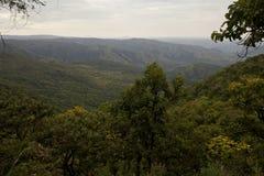 África, Etiópia sul, parque nacional de Mago Fotografia de Stock