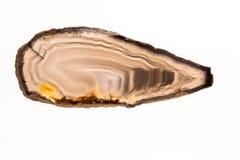 Ágata bonita, fatias coloridas Imagem de Stock