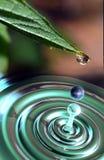 A água é vida ilustração do vetor
