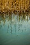 Água abstrata Imagens de Stock
