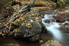Água atual Imagens de Stock