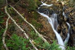 Água atual Fotografia de Stock