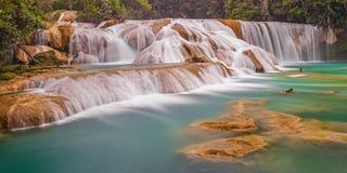 Água Azul Cascades Long Exposure, México fotos de stock royalty free