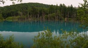 Água azul das reflexões na claro da lagoa do azul de Shirogane Fotografia de Stock Royalty Free