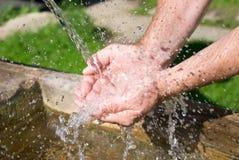 Água bebendo Fotos de Stock