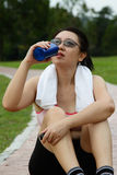 Água bebendo Foto de Stock