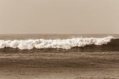 Água branca da onda do Sepia do oceano foto de stock royalty free