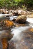 A água cai cascata na floresta tropical Fotos de Stock