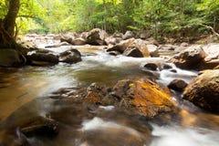 A água cai cascata na floresta tropical imagem de stock