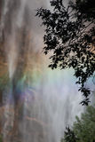 A água cai em Yosemite Fotografia de Stock
