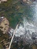 Água clara com árvore caída Imagens de Stock