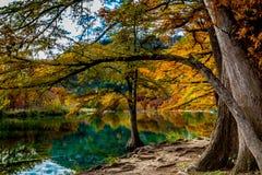 Água clara e folha brilhante de Garner State Park, Texas imagem de stock