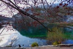 Água claro bonita nos lagos Fotografia de Stock