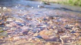 A água claro em uma montanha apedreja o leito fluvial video estoque