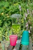 Água com hortelã e erva-cidreira Imagem de Stock