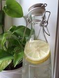 Água com limão Fotos de Stock Royalty Free