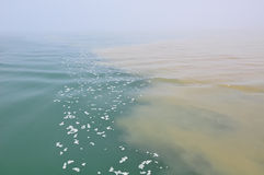 Água contaminada Fotografia de Stock Royalty Free
