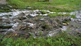 A água corre através rapidamente das pedras video estoque