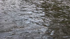 Água corrente interessante do rio de Strumeshnitsa Fotos de Stock Royalty Free